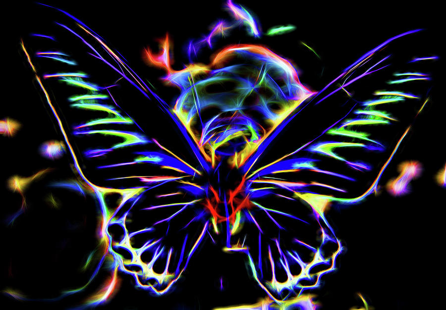 Butterfly  by Cathy Anderson