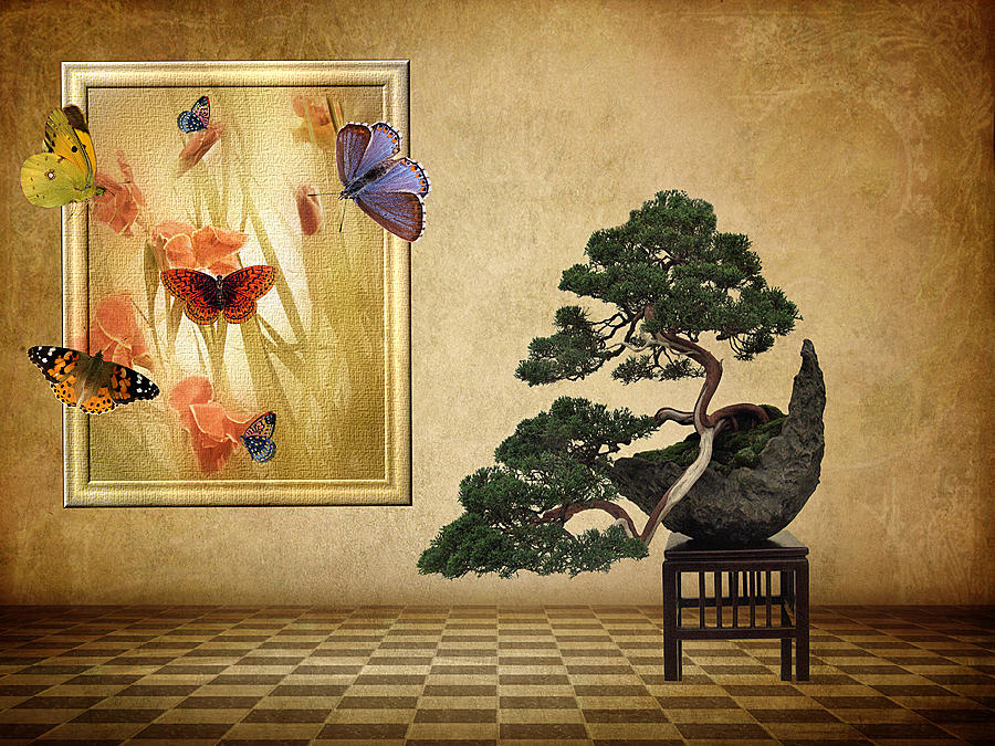 Fantasy Photograph - Butterfly Collection by Jessica Jenney
