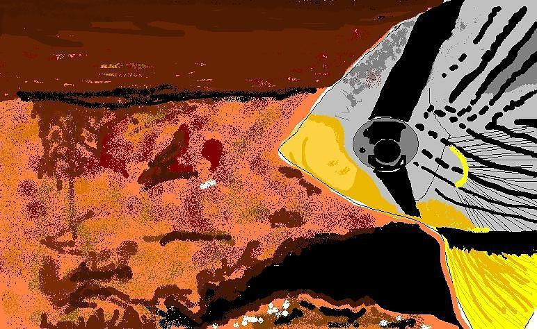 Saltwater Fish Digital Art - Butterfly Fish by Robert Rodriguez