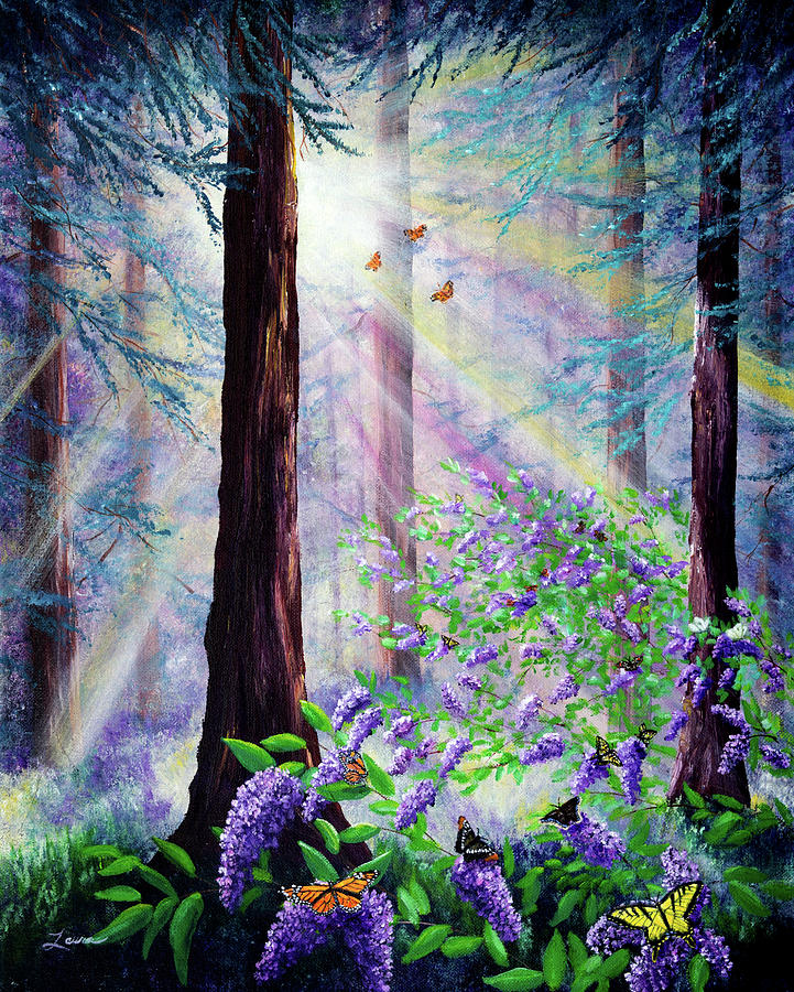 Butterfly Grove in Redwood Forest by Laura Iverson