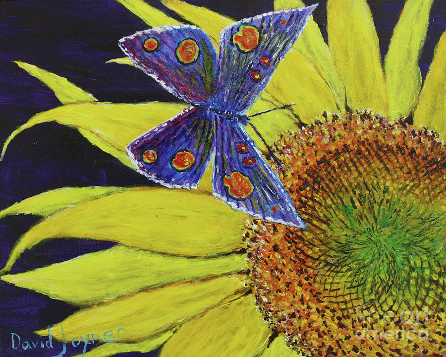 Butterfly Haven by David Joyner