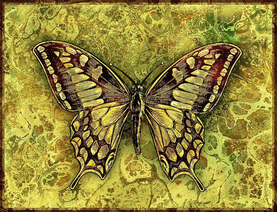 Butterfly Digital Art - Butterfly In Golds-amber Collection by Grace Iradian
