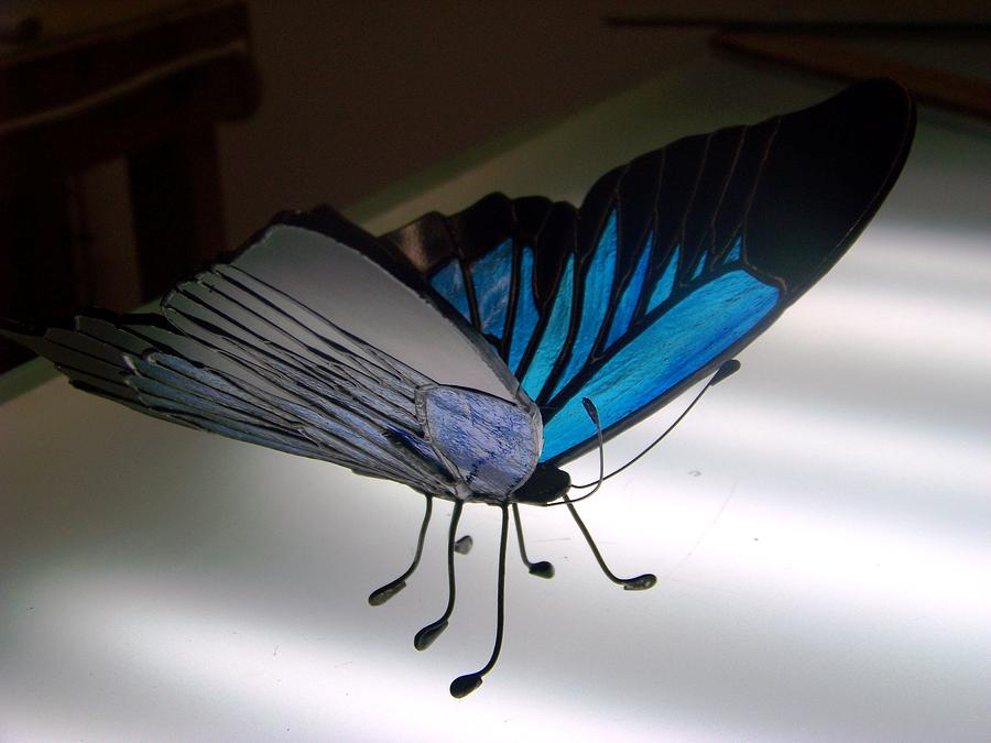 Butterfly Glass Art - Butterfly by Justyna Pastuszka