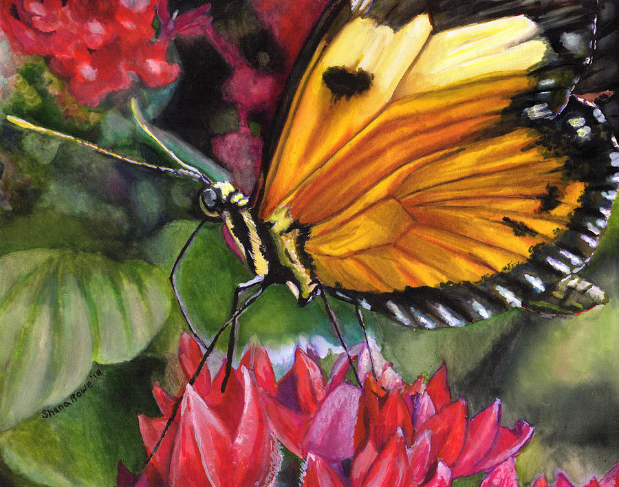 Butterfly Kisses by Shana Rowe Jackson
