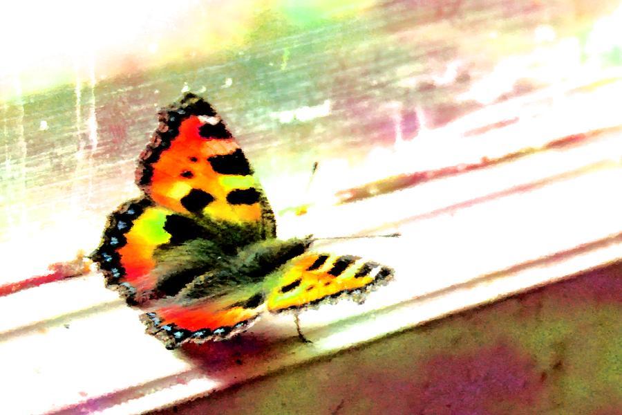 Butterfly On The Window Frame Watercolor Digital Art