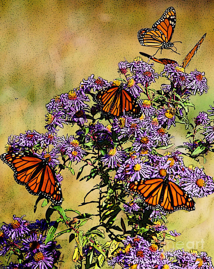 Diane Berry Drawing - Butterfly Party by Diane E Berry