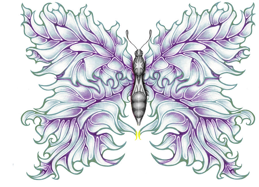 Drummer Drawing - Butterfly Tattoo 2 by Karen Musick