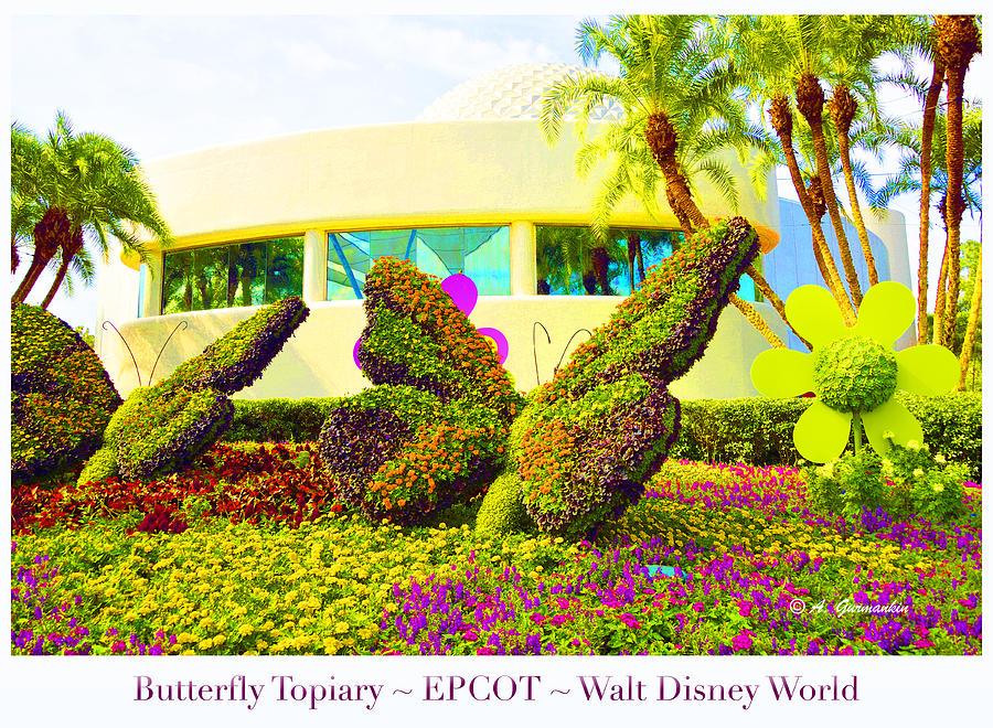 Butterfly Topiary Epcot Walt Disney World Digital Art by A Gurmankin