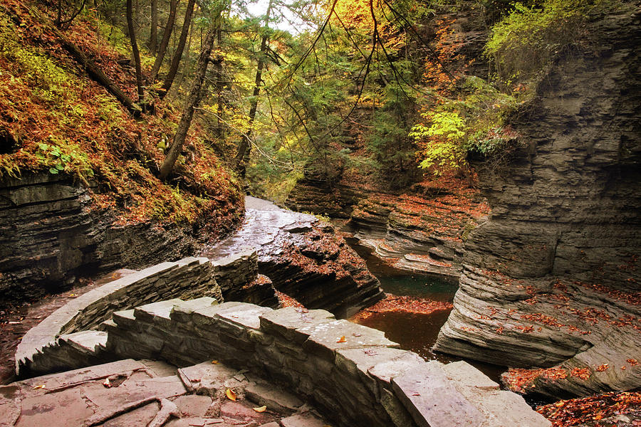 Buttermilk Falls Photograph - Buttermilk Falls Gorge by Jessica Jenney