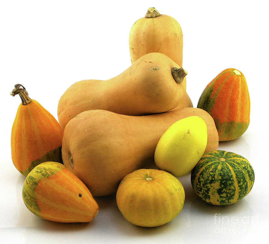 Canon Photograph - Butternut Squash With Gourds  by Ricky L Jones