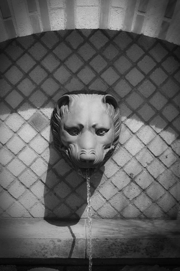 J Paul Getty Photograph - Bw Fountain Head by Teresa Mucha