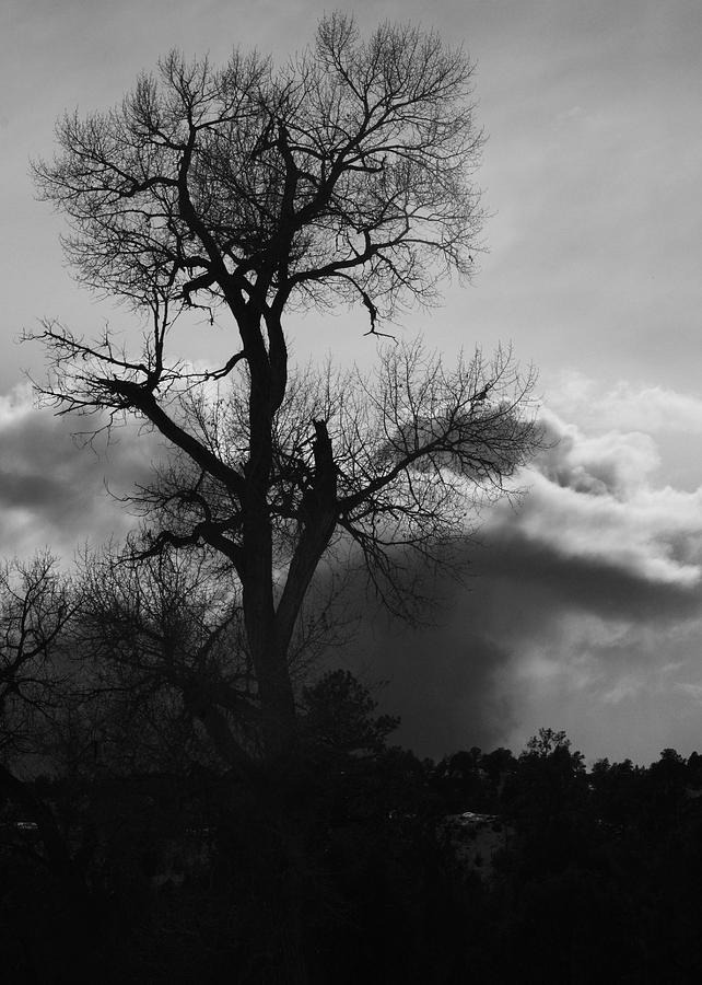 Black And White Photograph - BW1 by Wesley Hanna