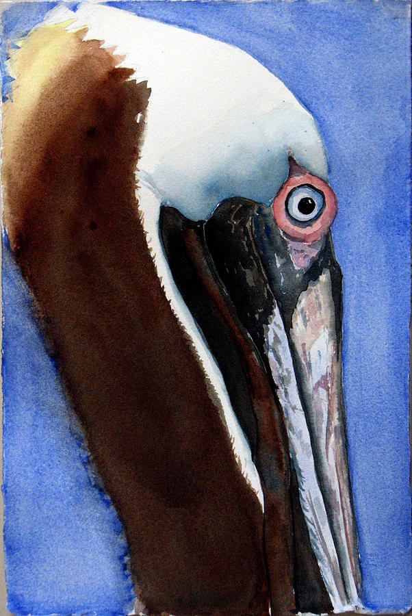 Bird Painting - Bwon Pelican Eye by Libby  Cagle