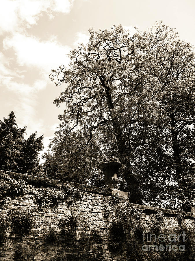 Medieval Architecture Photograph - By The Canal by Lexa Harpell