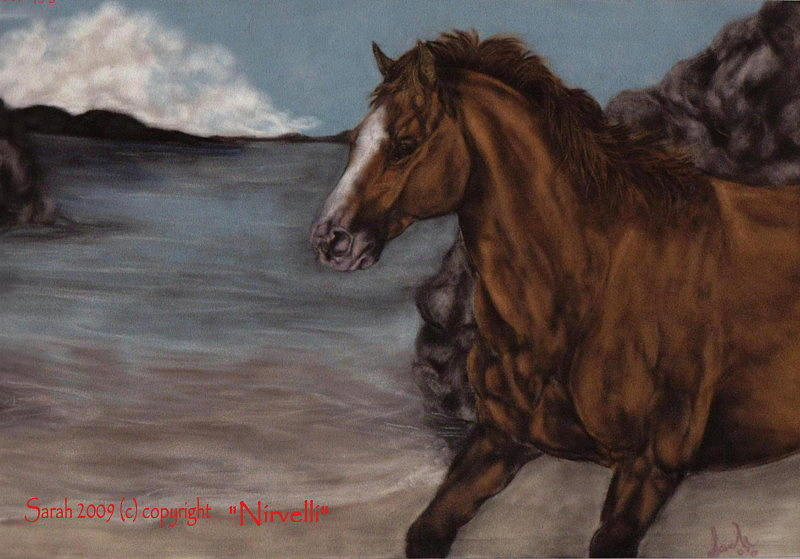 Horse Painting - By The Sea by Sarah Whittington