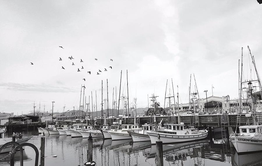 By the Warf by Megan Ford-Miller