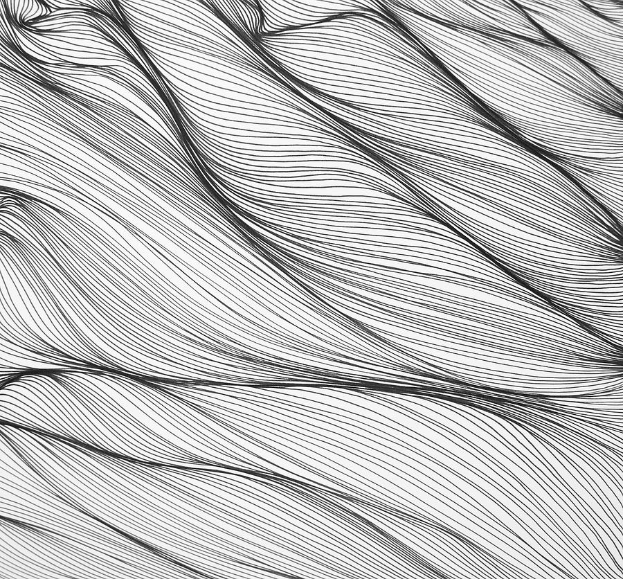 Line Drawing - byv by Kris Freeman