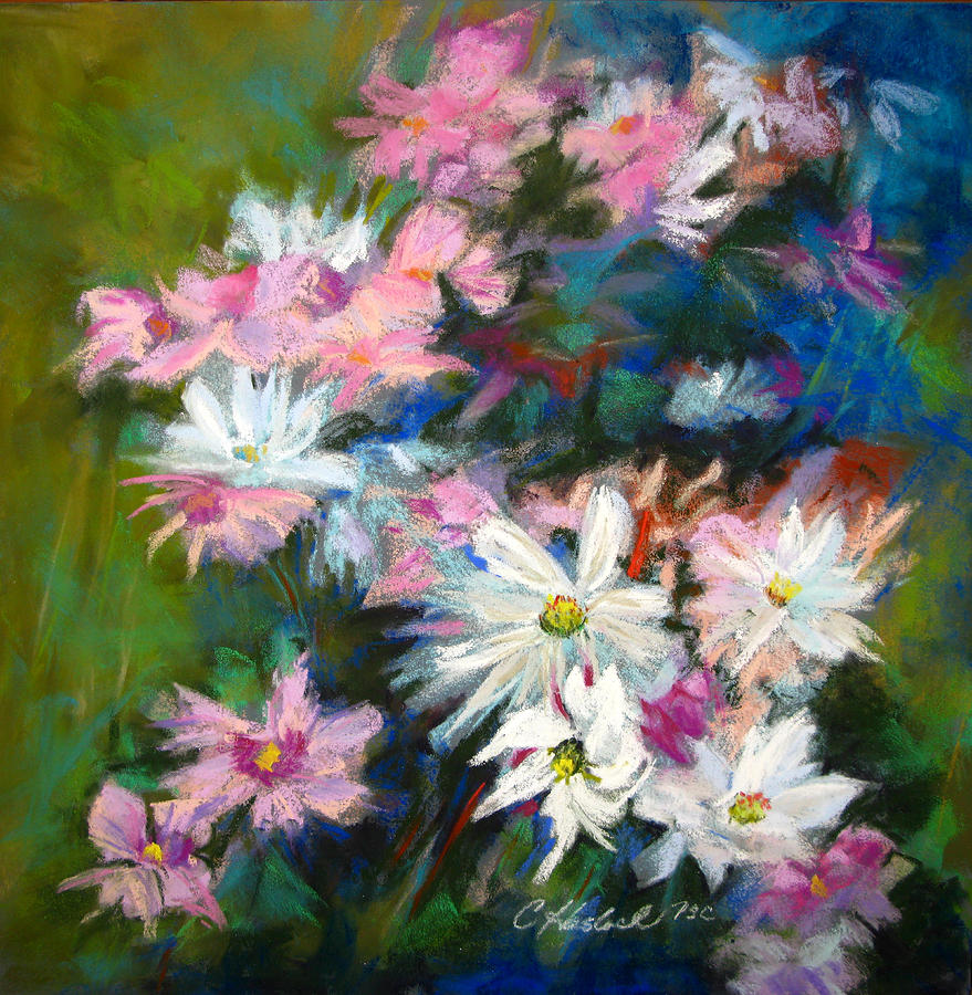 Colorful Pastel - C And D  Cosmos And Daisy That Is by Carole Haslock