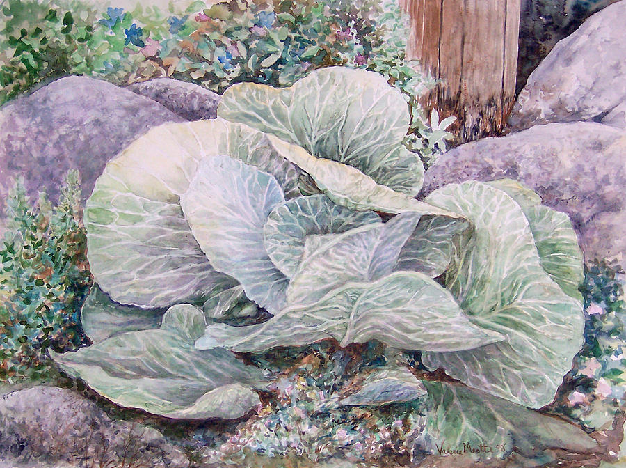 Leaves Painting - Cabbage Head by Valerie Meotti
