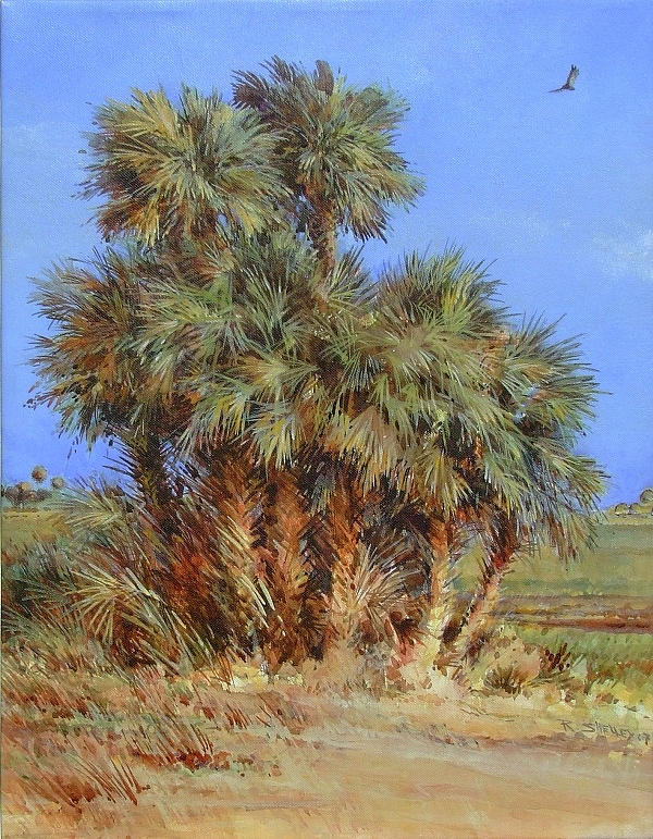 Cabbage Palms in the Dry Season by Ronald Shelley