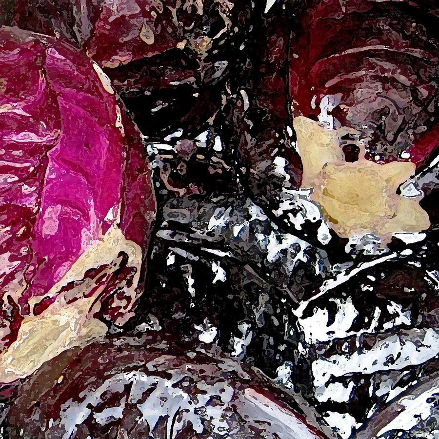 Cabbage Red by John Vincent Palozzi