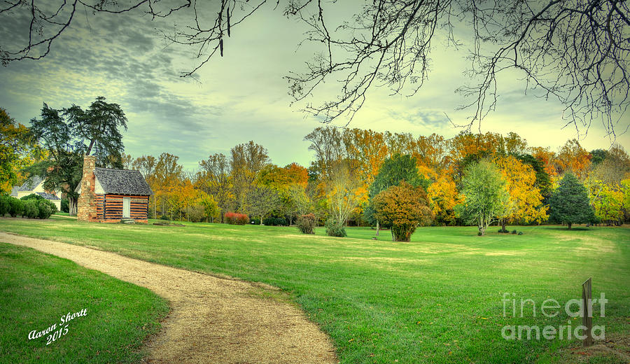 Trees Photograph - Cabin And Autumn Trees by Aaron Shortt
