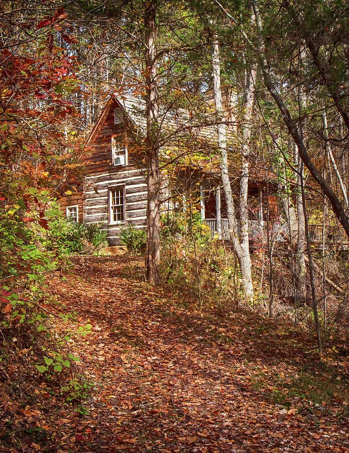 Cabin at Cedar Spring by Rich Isaacman