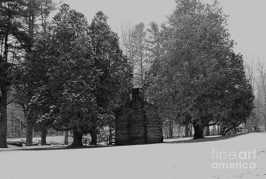 Snow Photograph - Cabin Between The Cedars by Eric Liller