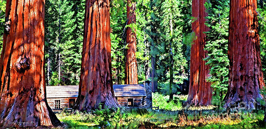 Cabin In Mystical Giant Sequoia Forest by John Stephens