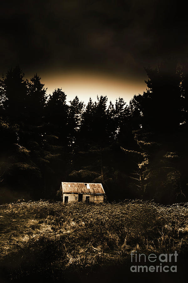 Woods Photograph - Cabin In The Woodlands  by Jorgo Photography - Wall Art Gallery