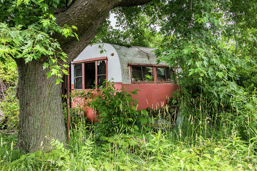 Cabin in the Woods by Lindy Grasser