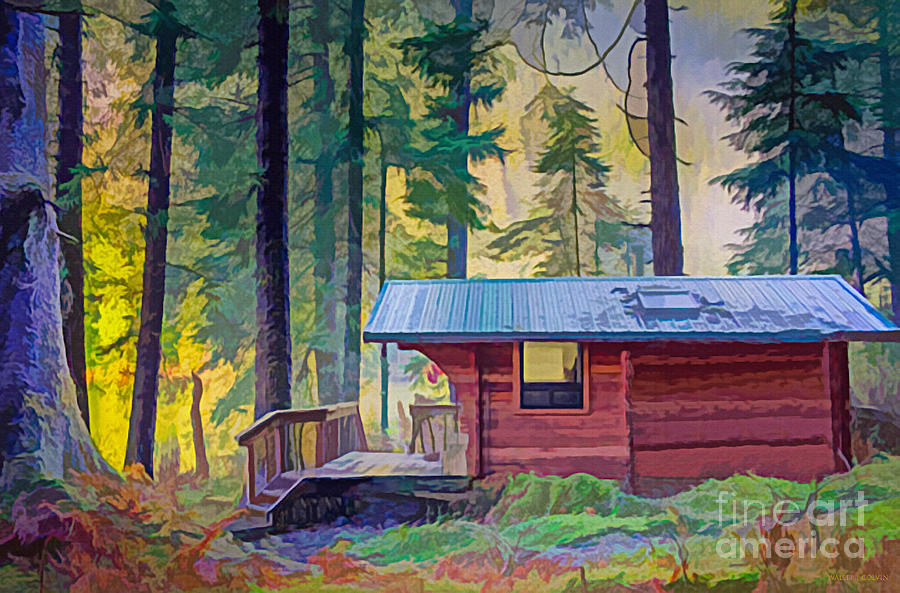 Cabin Digital Art - Cabin In The Woods by Walter Colvin