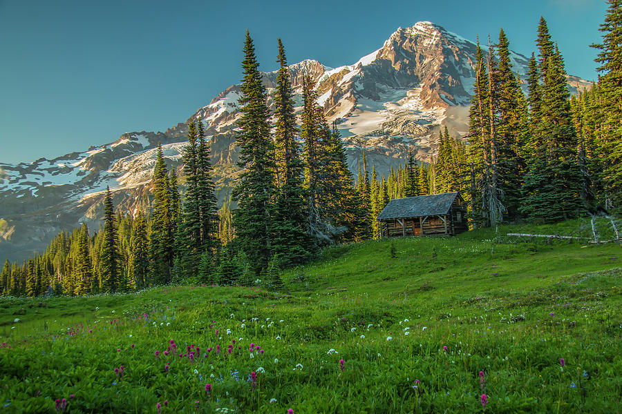 Cabin on the Hill by Doug Scrima