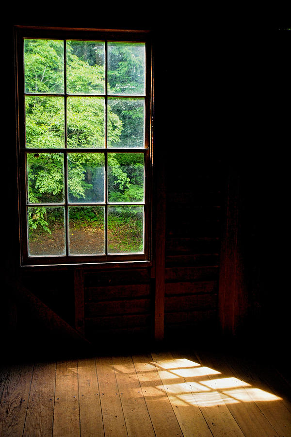Cabin View by Don Keisling