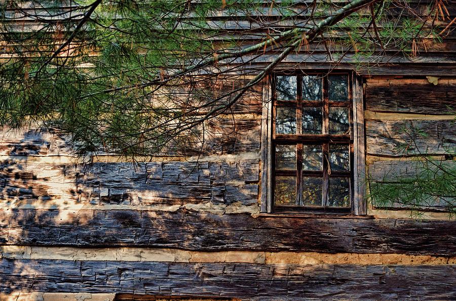 Cabin Window by Joanne Coyle
