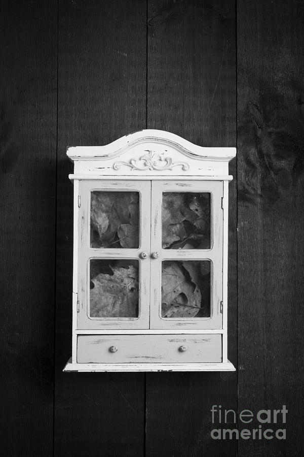 Wall Photograph - Cabinet Of Curiosity by Edward Fielding
