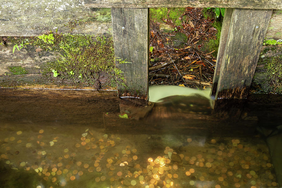 Grist Photograph - Cable Mill Flume 1 B by John Brueske