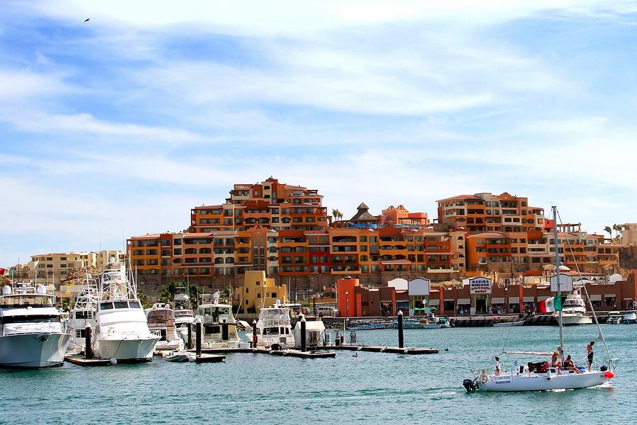 Marina's Photograph - Cabo San Lucas Marina by Robert  McKinstry