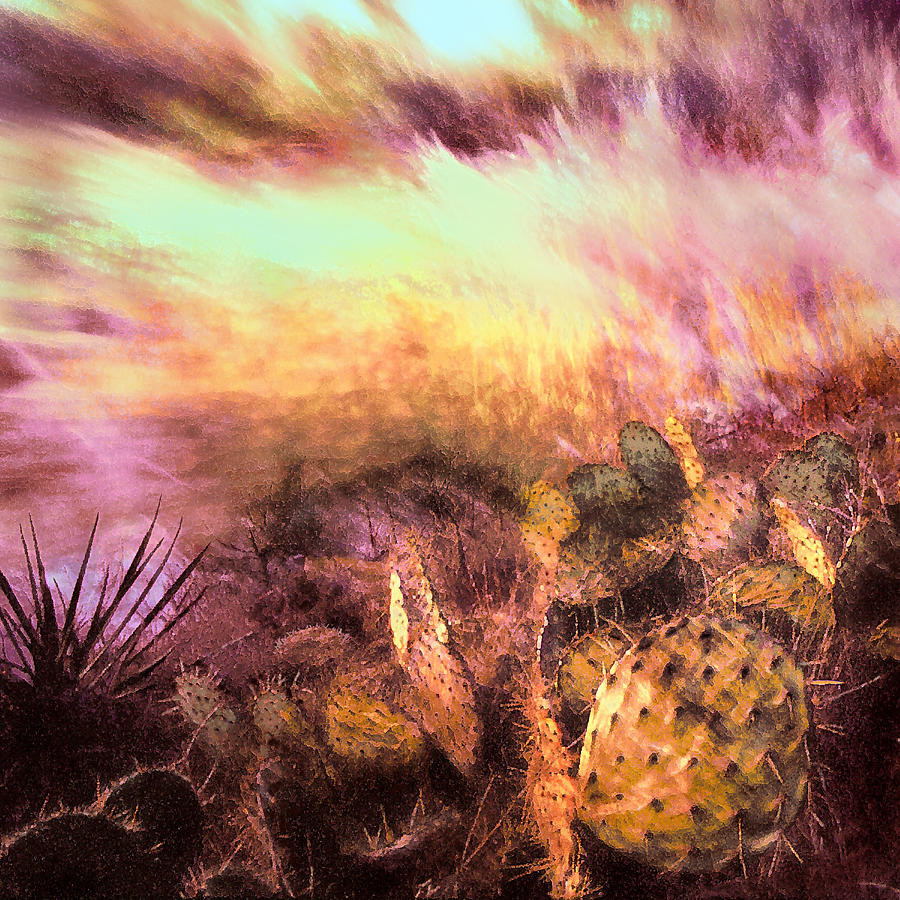 Deserts Photograph - Cacti And The Wind by Dean Uhlinger