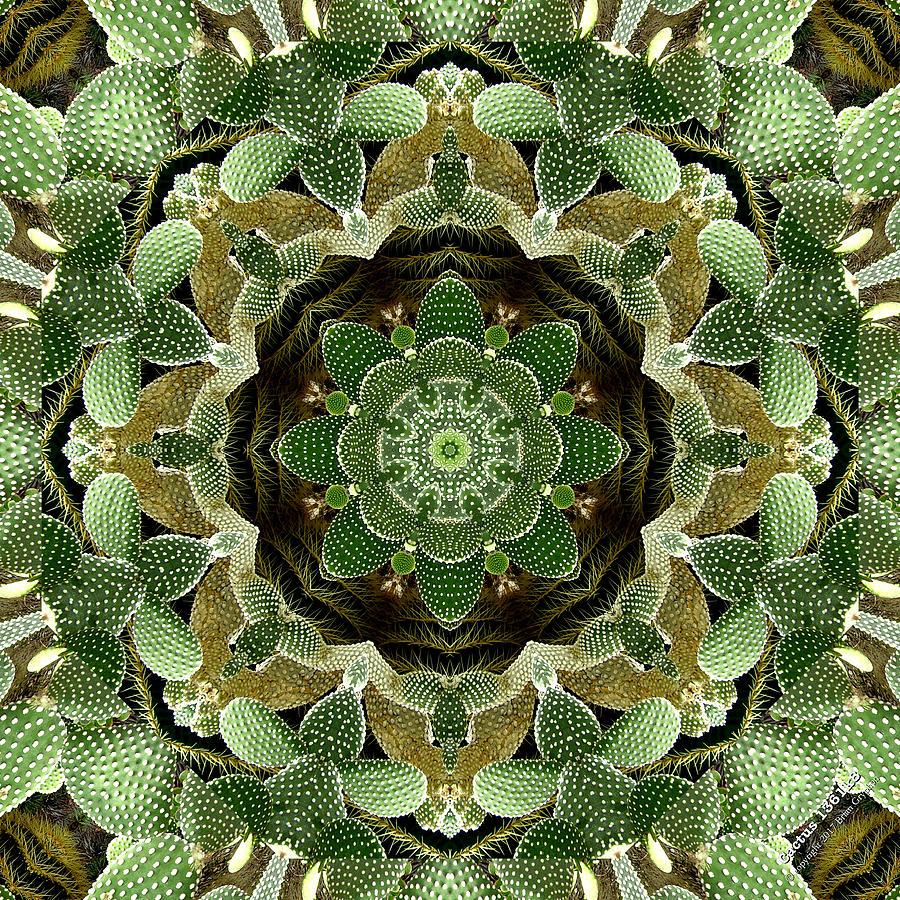 Green Digital Art - Cactus 1361k8 by Brian Gryphon