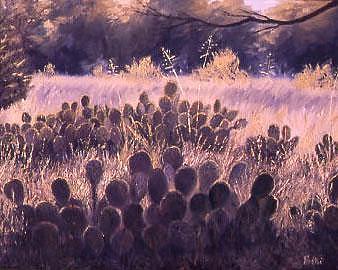 Cactus Light Painting by Biki Chaplain