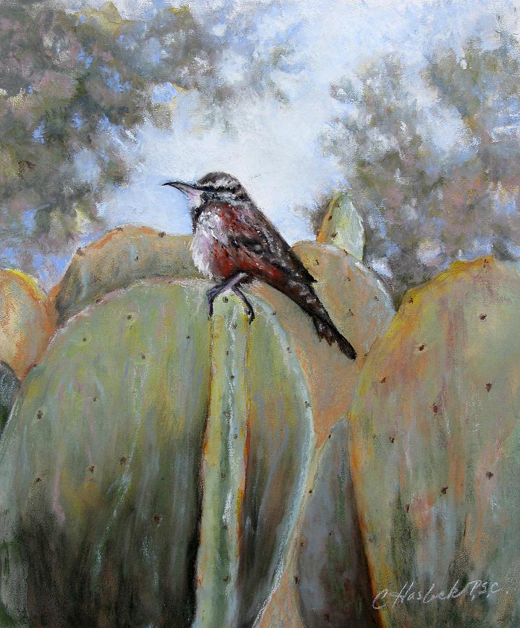 Nature Pastel - Cactus Wren by Carole Haslock