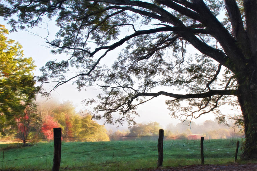 Appalachia Photograph - Cades Cove Autumn Morning by Lana Trussell