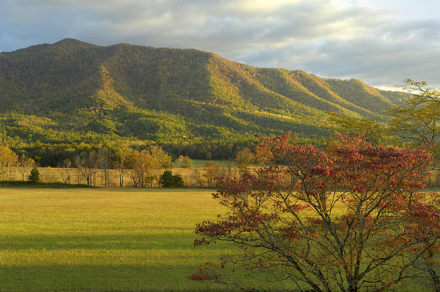 Cades Cove Photograph - Cades Cove Autumn Sunset In Great Smoky Mountains by Darrell Young