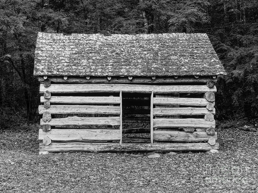 Tennessee Photograph - Cades Cove Cabin by Phil Perkins