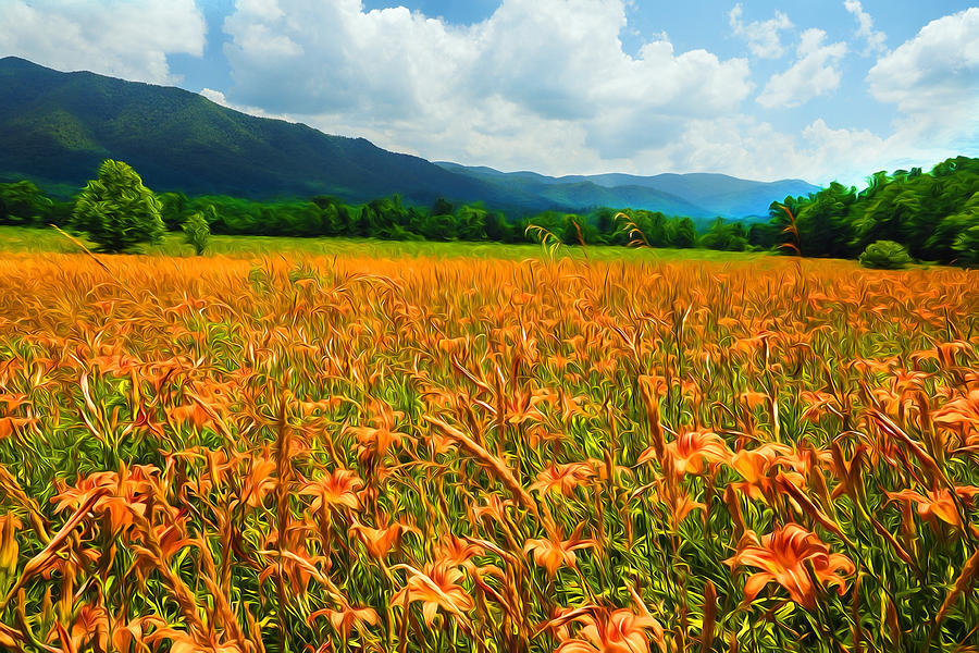 Cades Cove Daylilies Paint 2 by Don Keisling