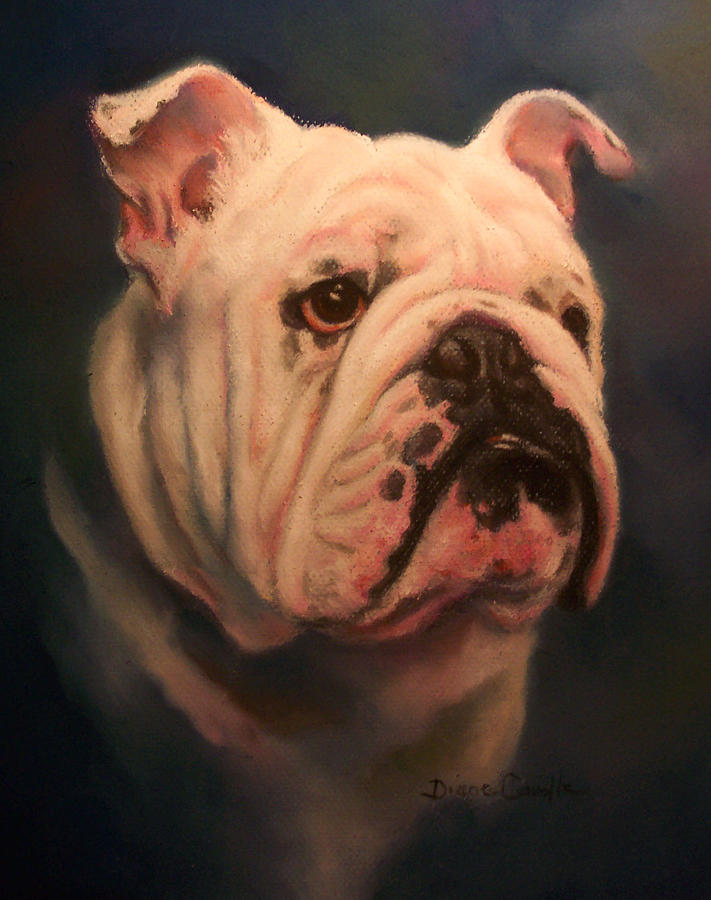English Bull Dog Painting - Caesar by Diane Caudle