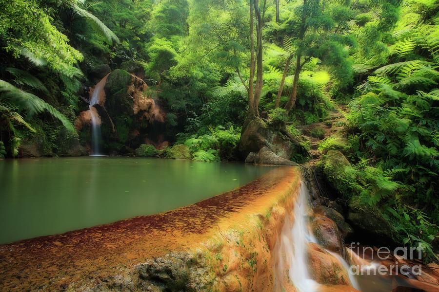 Natural Monument Photograph - Caldeira Velha - Azores Islands by Gaspar Avila
