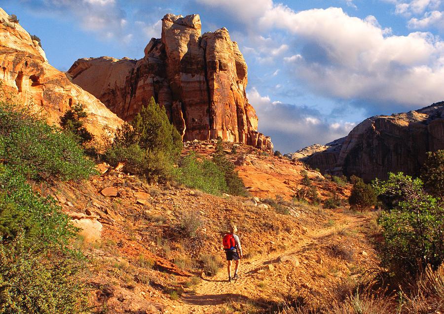 Utah Photograph - Calf Creek Canyon Escalante Utah by Utah Images