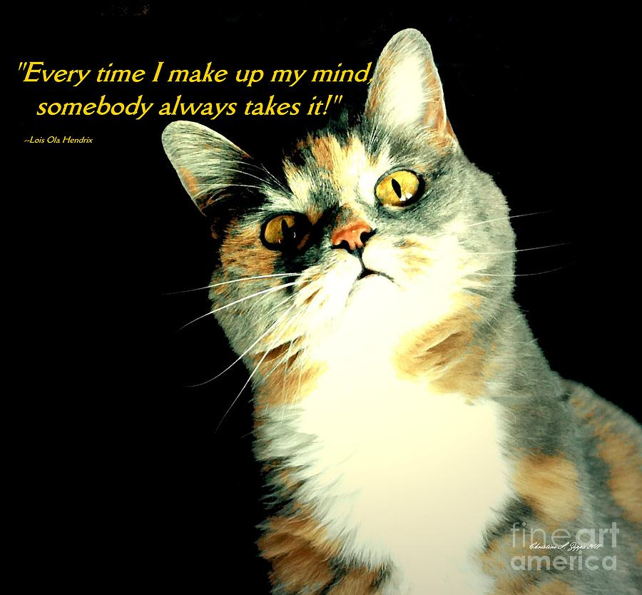 Cat Photograph - Calico Kitty - Paintograph With Losing-mind Quotation by Christine S Zipps